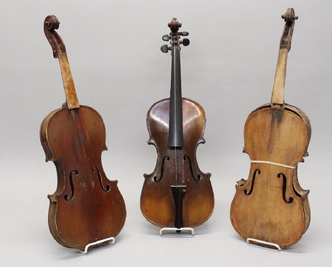 Three Labeled Violins