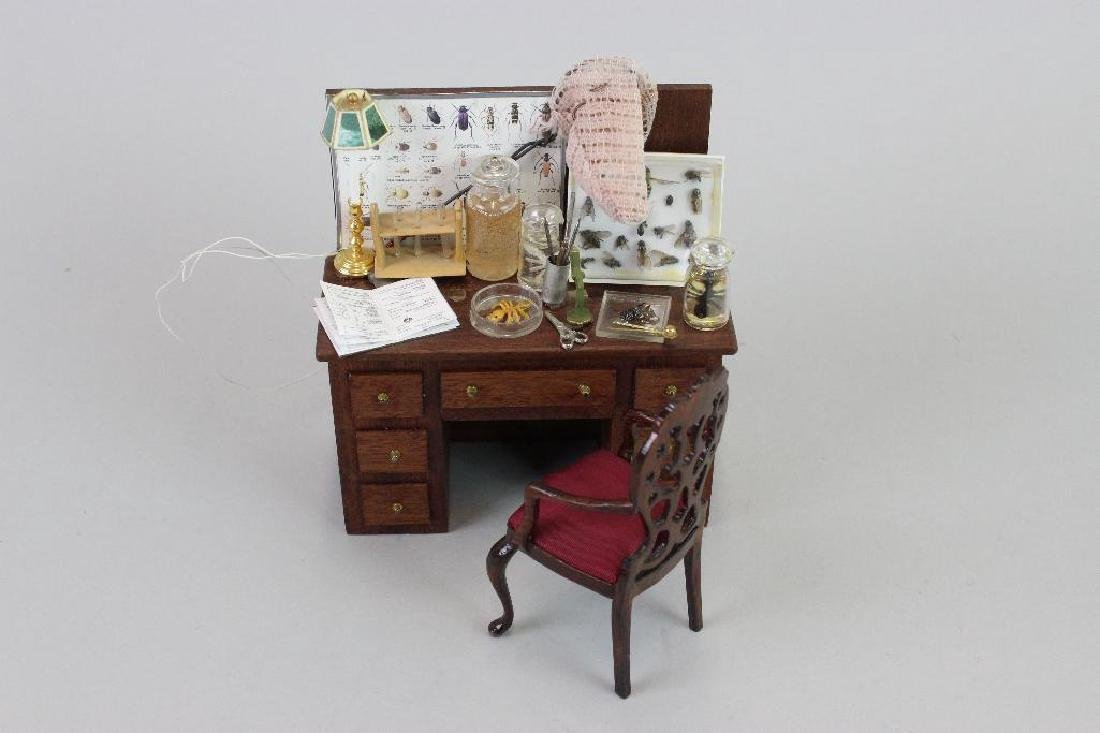 Entomologist desk and Insect books