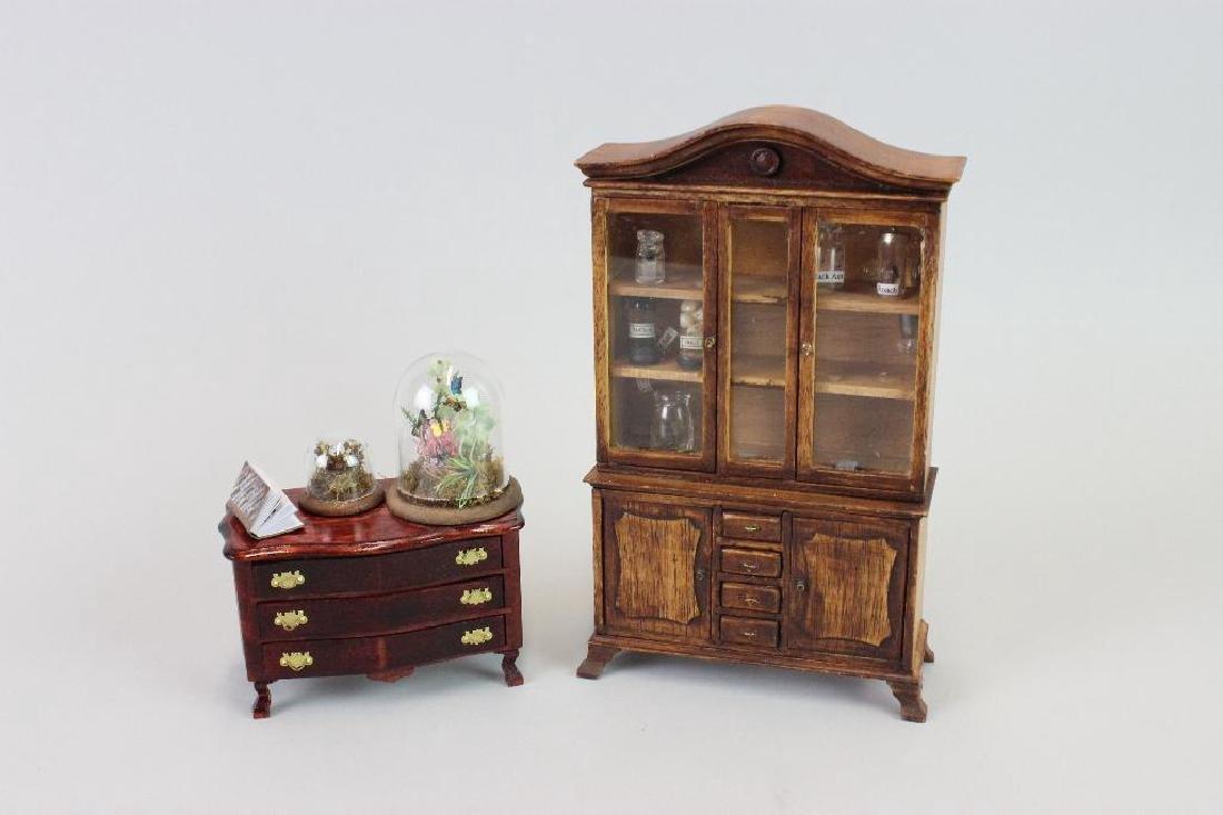 Entomologist Specimen Cabinet and  display cases