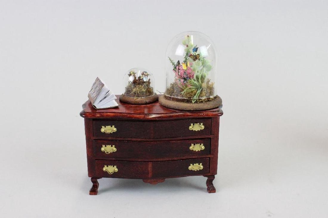 Entomologist Specimen Cabinet and  display cases - 2