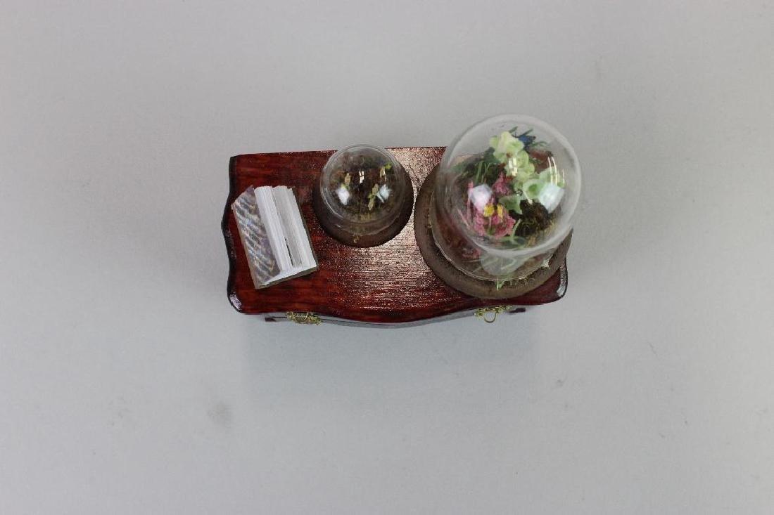 Entomologist Specimen Cabinet and  display cases - 3