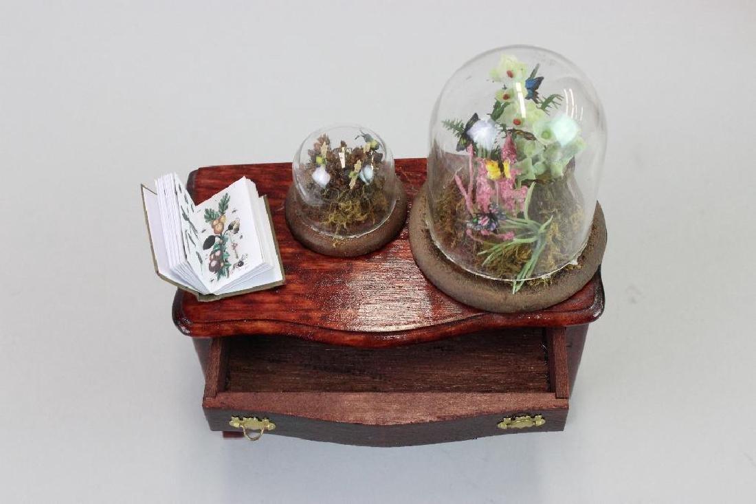 Entomologist Specimen Cabinet and  display cases - 4