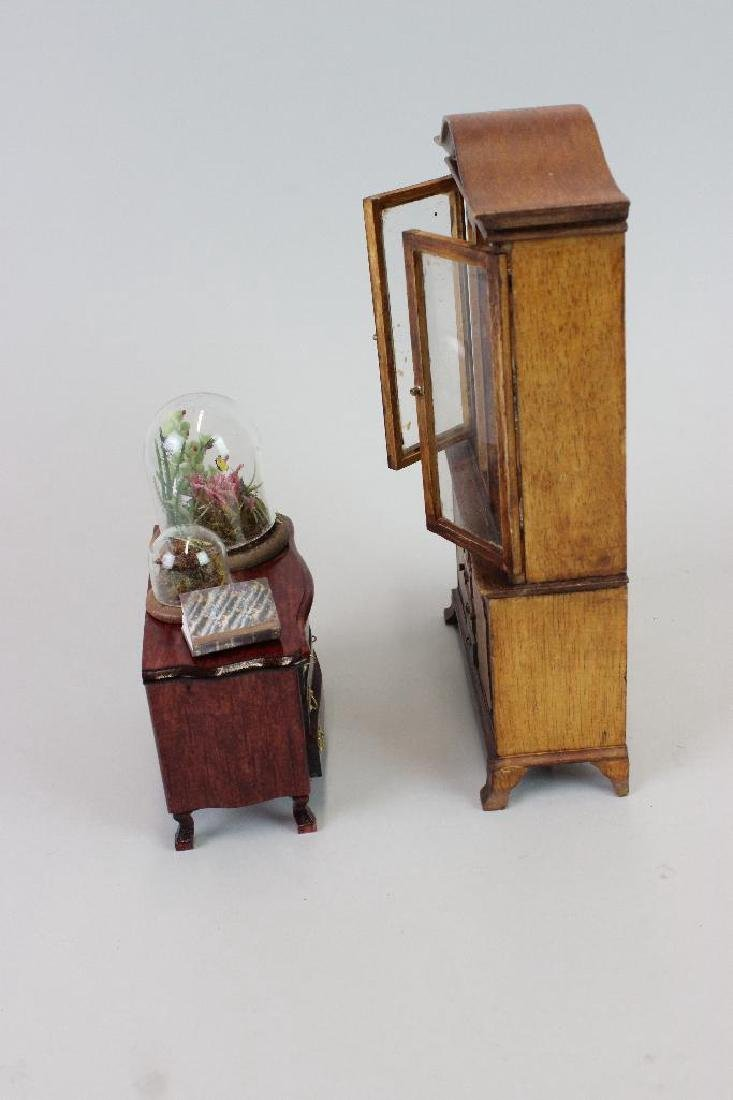 Entomologist Specimen Cabinet and  display cases - 6