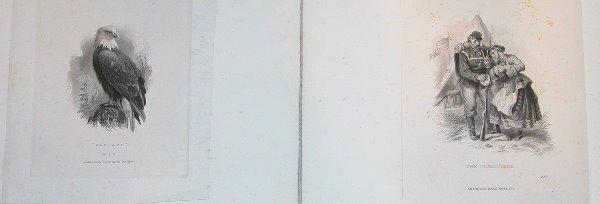 15: Proof Steel Engravings-American Bank Note Company (