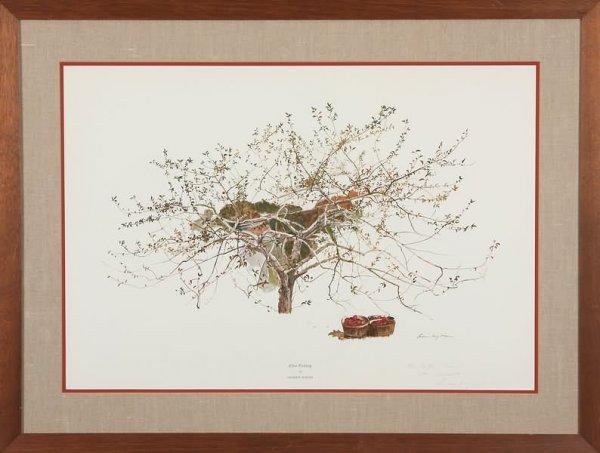 3012: Andrew Wyeth
