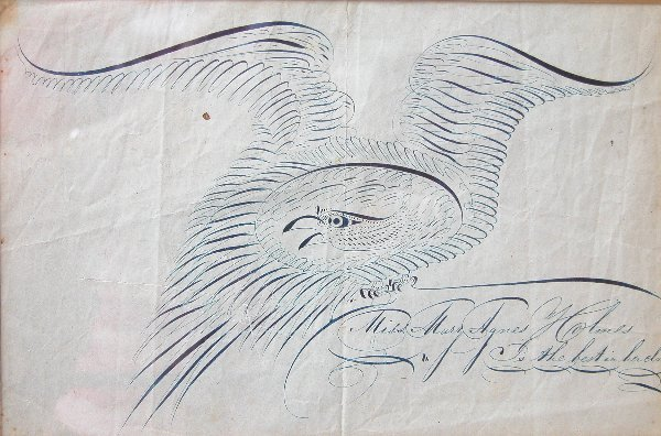 1023: Calligraphy Eagle