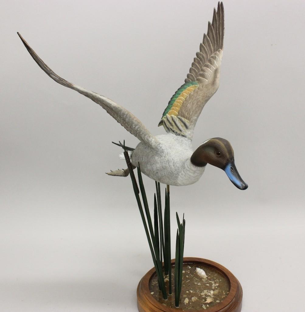 Flying Drake Pintail on Marsh Scene Base- Frank - 2