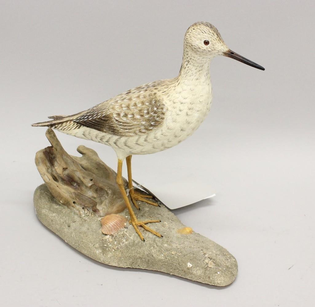 Yellowlegs shorebird- John Kouchinksy - 2