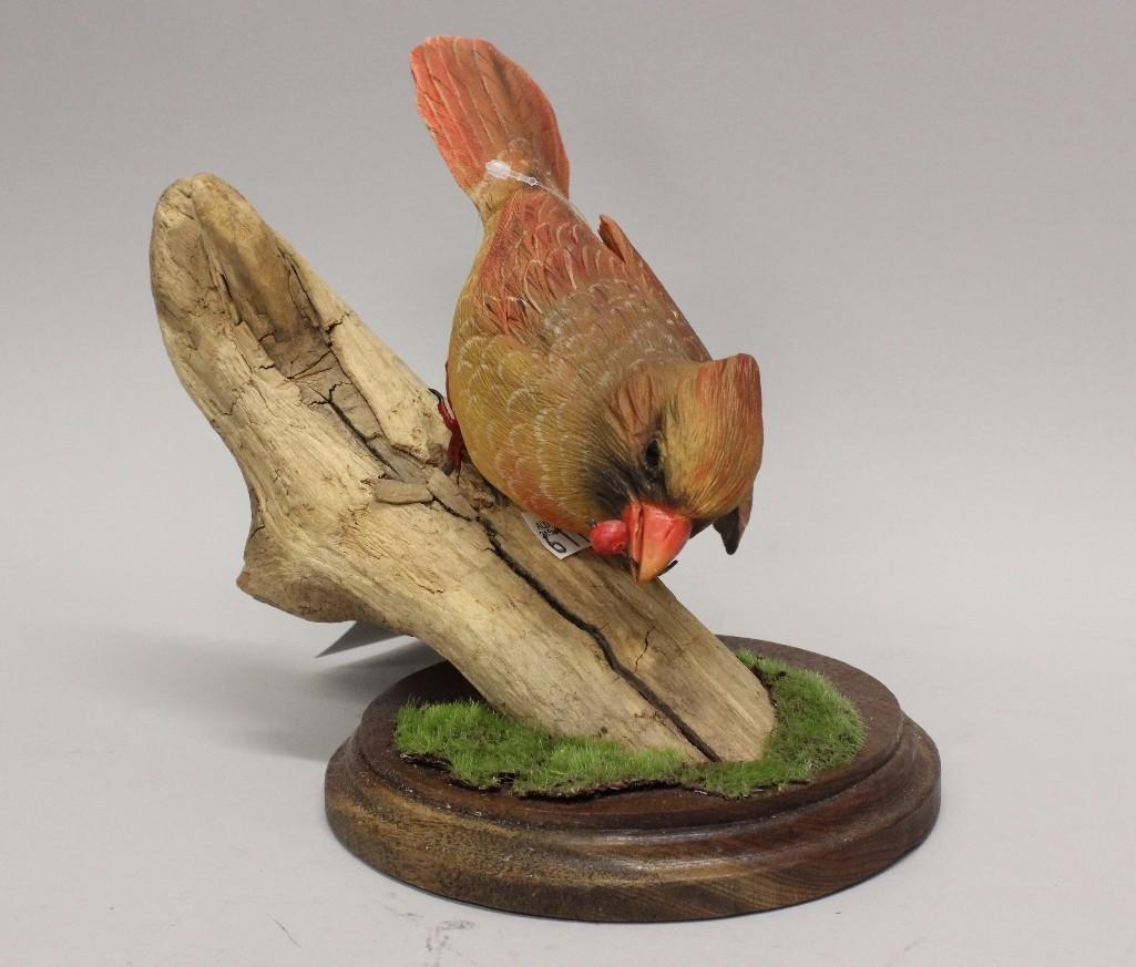 Northern Cardinal- Frank Scherber