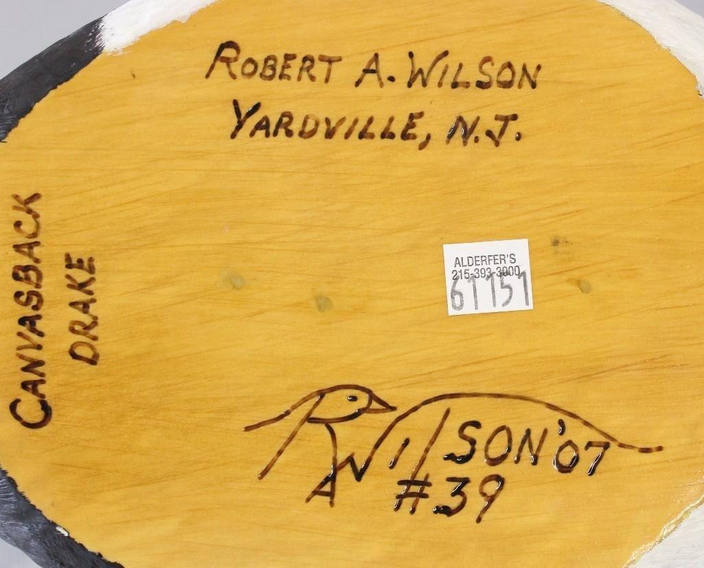 Canvasback drake - Robert A. Wilson - 3