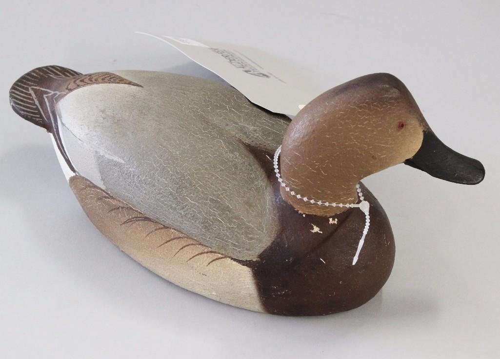 Canvasback Hen- Ward Brothers - 4