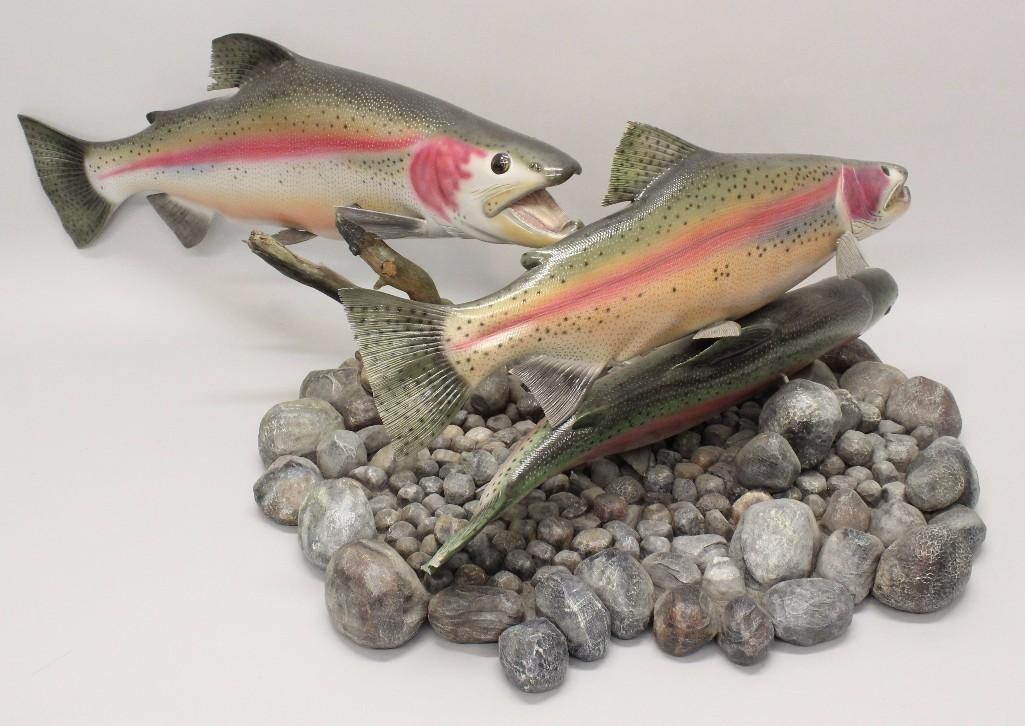 Rainbow Trout (finning) - 2
