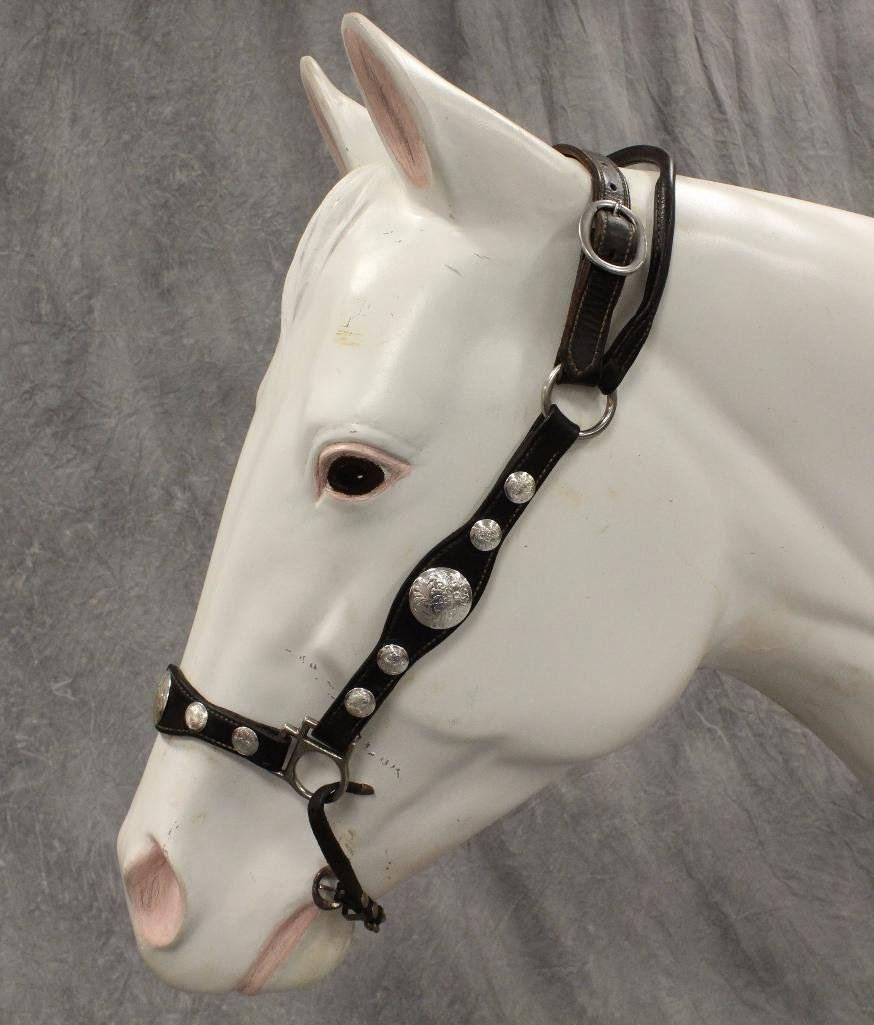 Black Leather Horse Halter