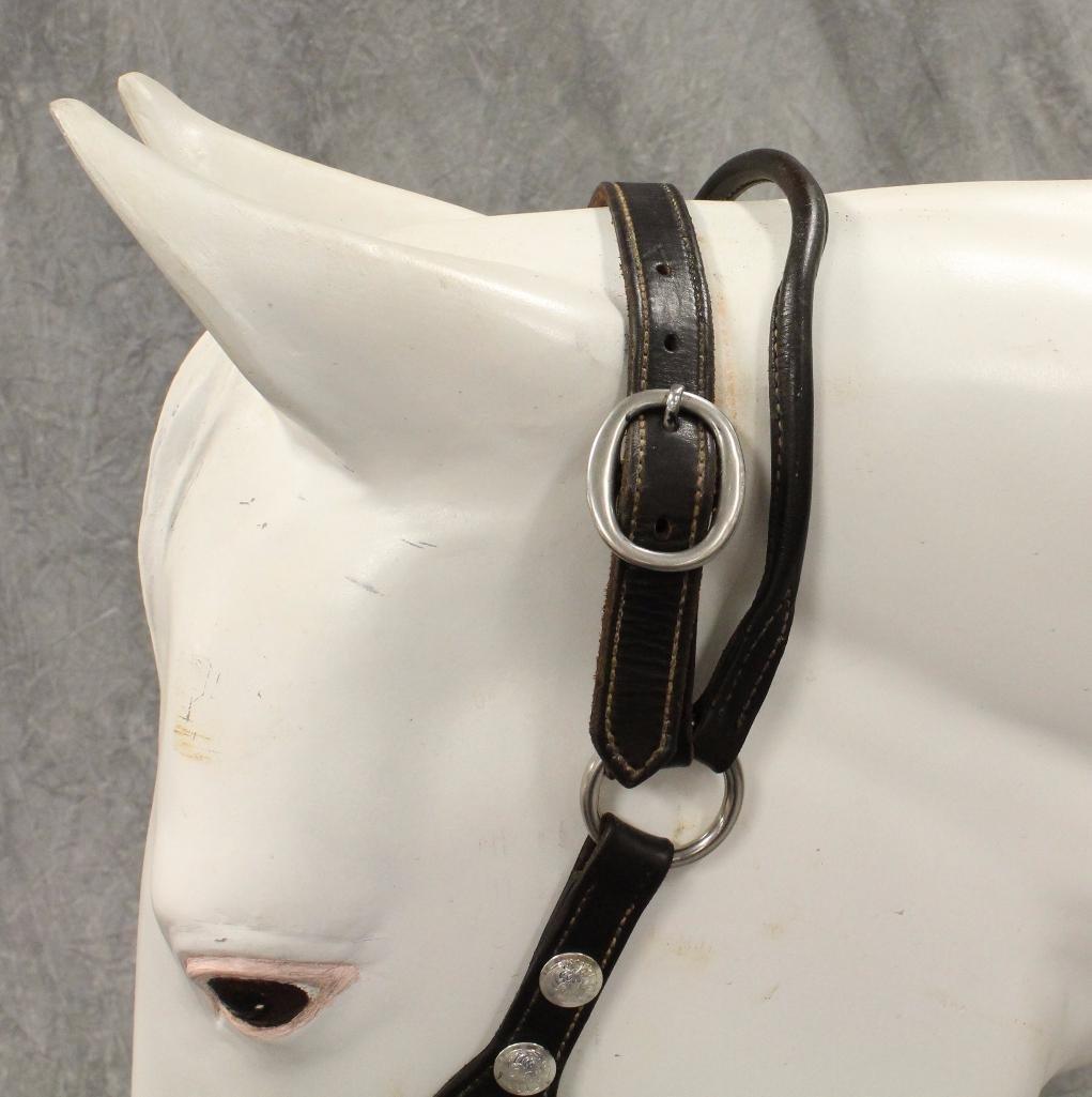 Black Leather Horse Halter - 6