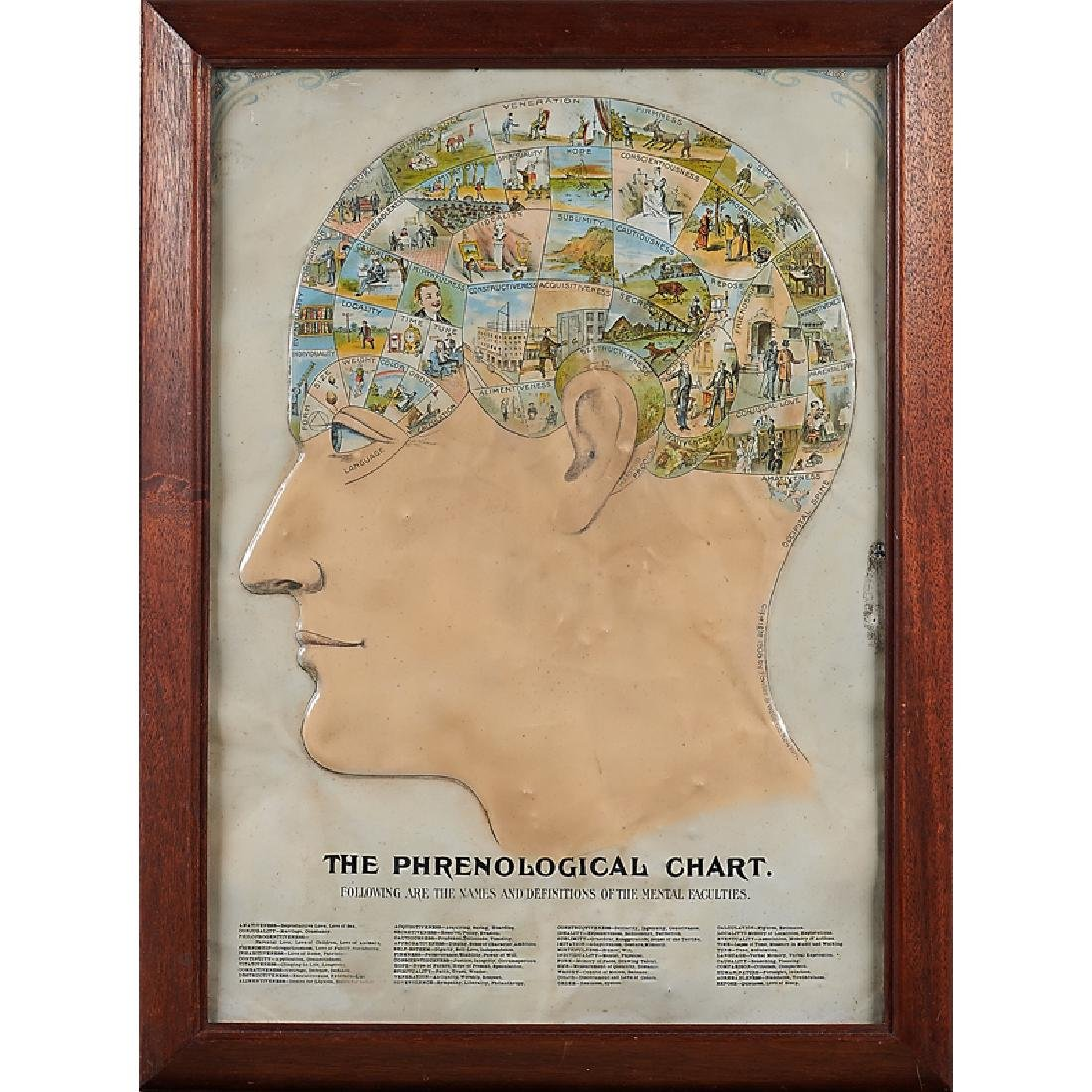 RARE PAINTED TIN PHRENOLOGICAL CHART AND ETC.
