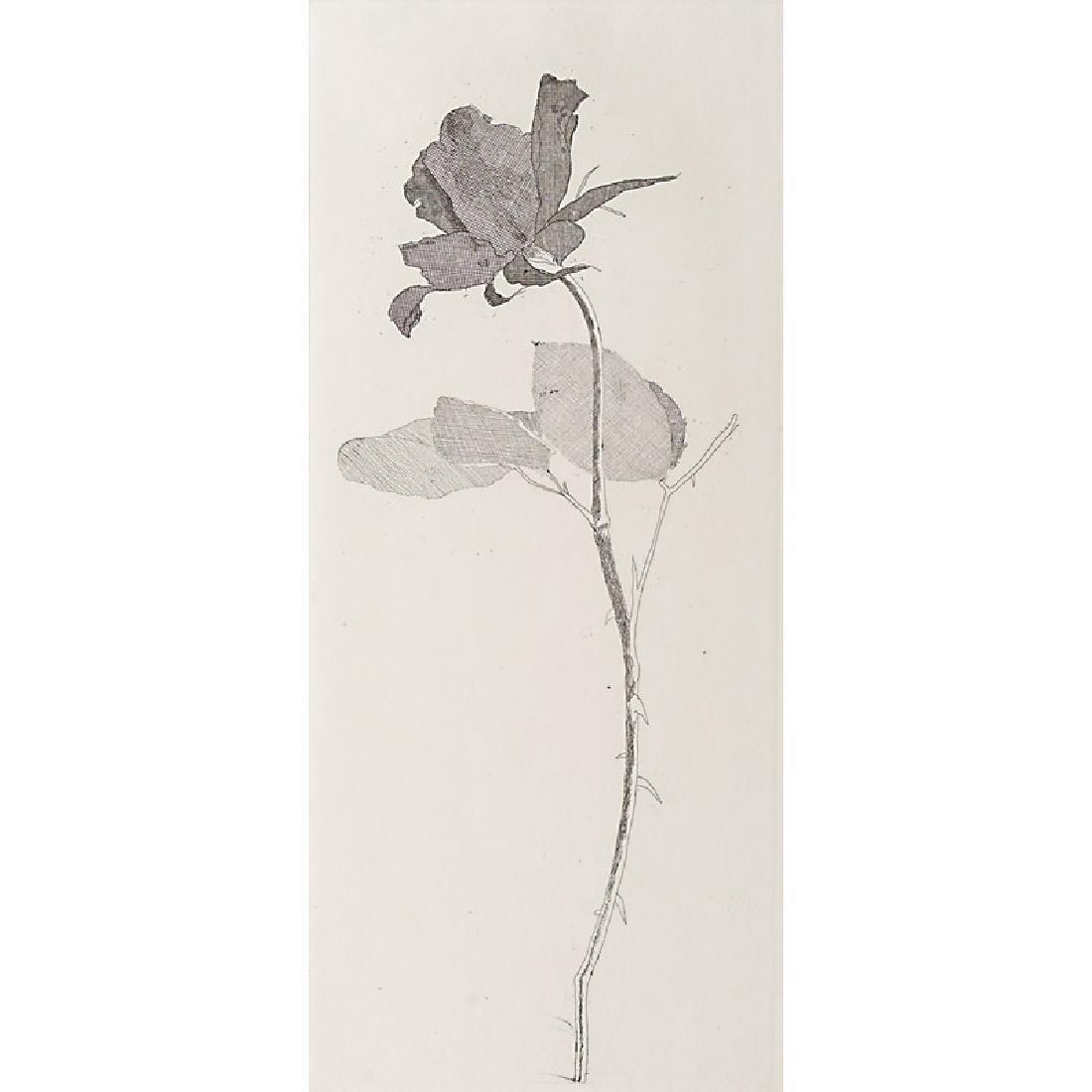 David Hockney (British, b. 1937)
