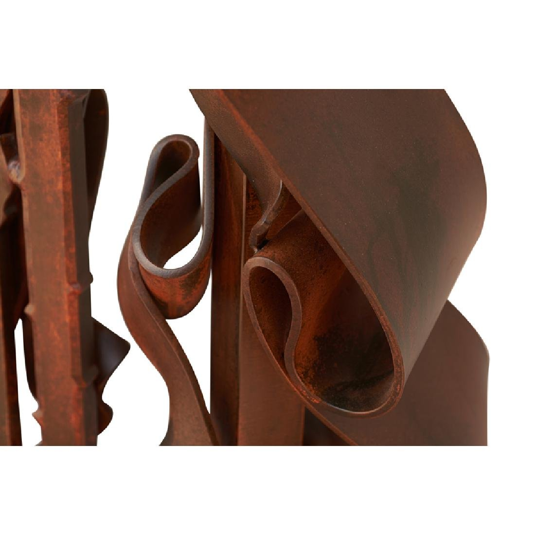 ALBERT PALEY Untitled (Garden Gate) - 7