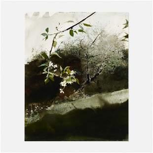 Andrew Wyeth, Bartlett Pear