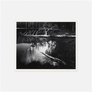 Ansel Adams, Siesta Lake