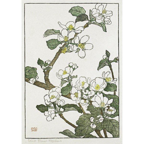 268: EDNA BOIES HOPKINS; Color woodblock print