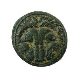 ANCIENT GREEK AE COIN