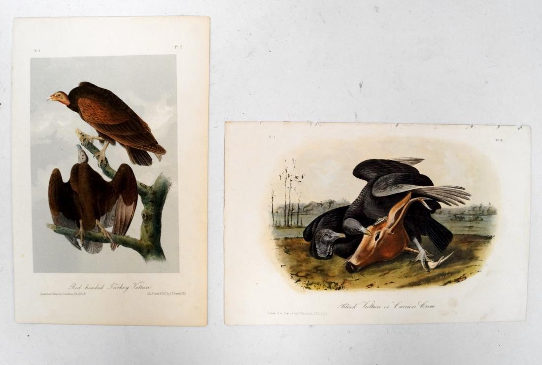 JOHN J. AUDUBON (AMERICAN 1785-1851), LOT (2) OCTAVO