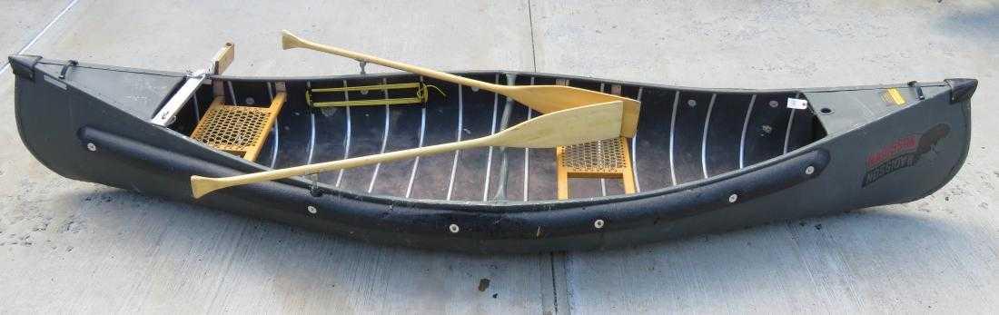 Radisson canoe for sale