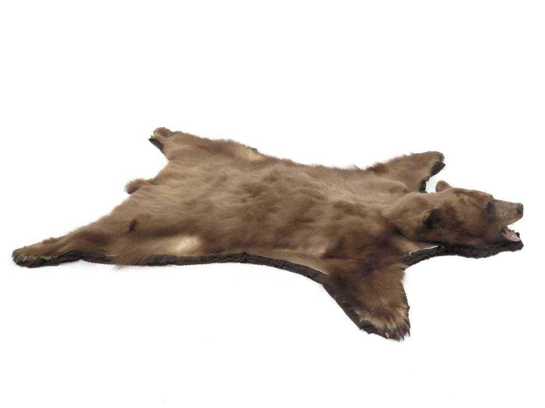 "BROWN BEAR SKIN RUG WITH HEAD AND CLAWS. 84 X 70"" - 2"