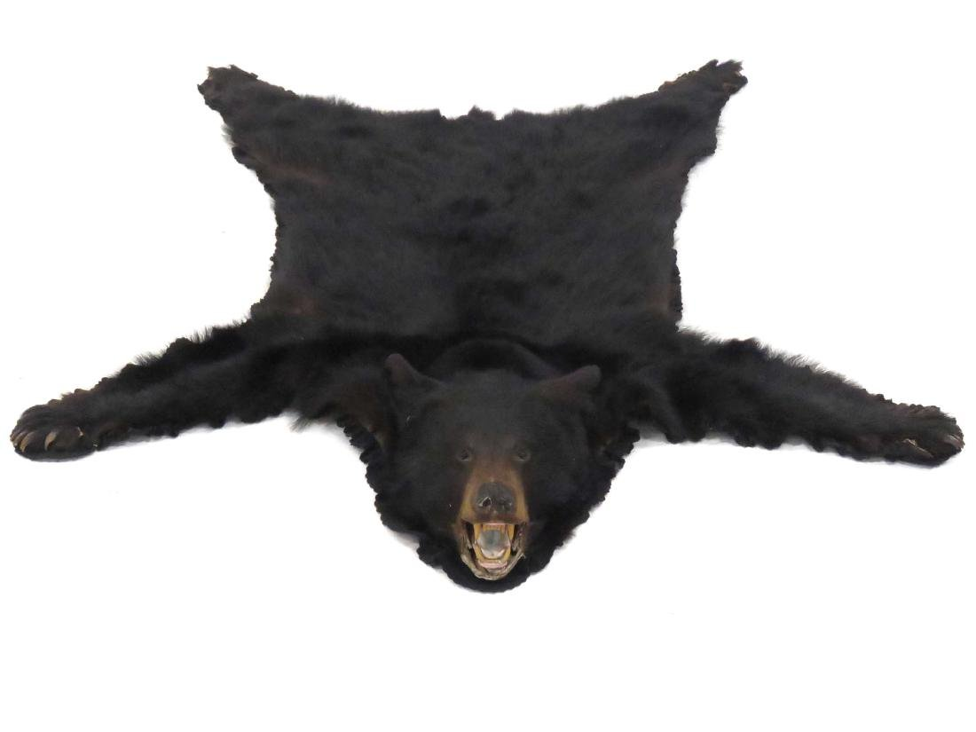 VINTAGE BLACK BEAR RUG WITH HEAD/CLAWS. 72 X 58""