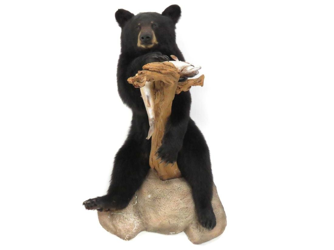 FULL BODY BLACK BEAR WITH FISH TROPHY WALL MOUNT - 3