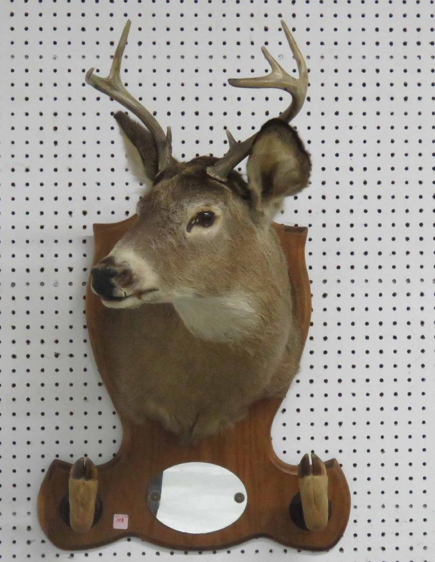7-POINT DEAR HEAD PLAQUE WITH MIRROR AND HOOF GUN RACK
