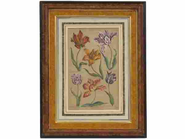 """AFTER J. HILL, HAND COLORED ENGRAVING, """"TULIPS"""", 19TH"""