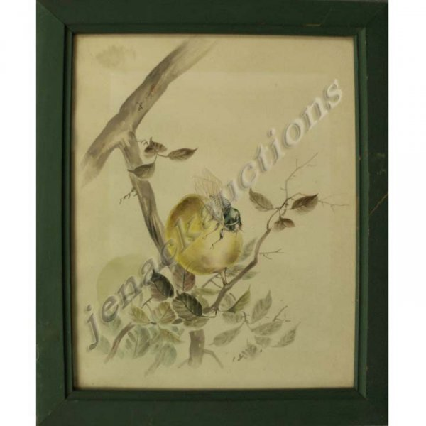 1016: JAPANESE WATERCOLOR, CICADA ON FRUIT, SIGNED