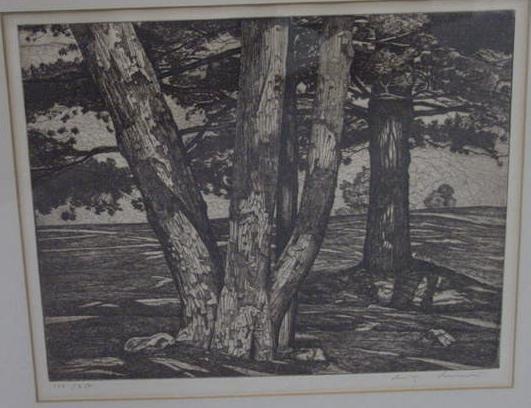 """12: ETCHING """"DESIGN OF TREES""""  LUIGI LUCIONI"""