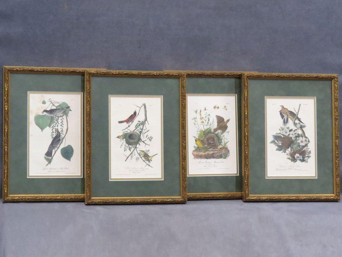 LOT (4) JOHN JAMES AUDUBON, BIRDS OF NORTH AMERICA