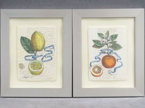 Italian School (19th Century), Lot (2) Hand Colored