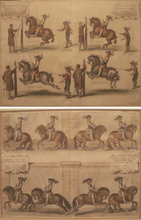 1008: LOT (2) HAND COLORED ENGRAVINGS