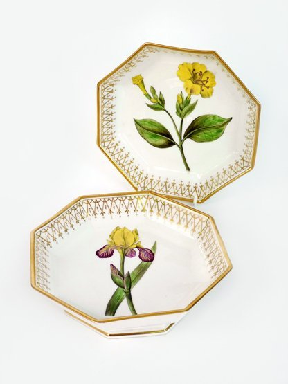 A pair of Continental octagonal porcelain Dishes, 19th