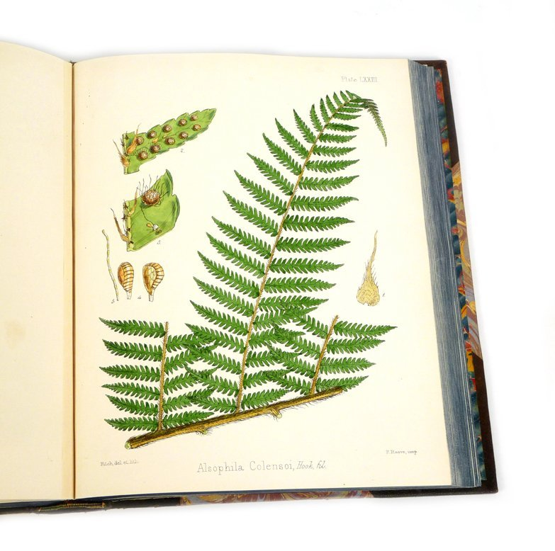 HOOKER, Joseph Dalton: The botany of the Antarctic voya