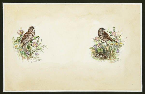 201: TUDOR, Tasha. Two Sparrows. Two original waterc