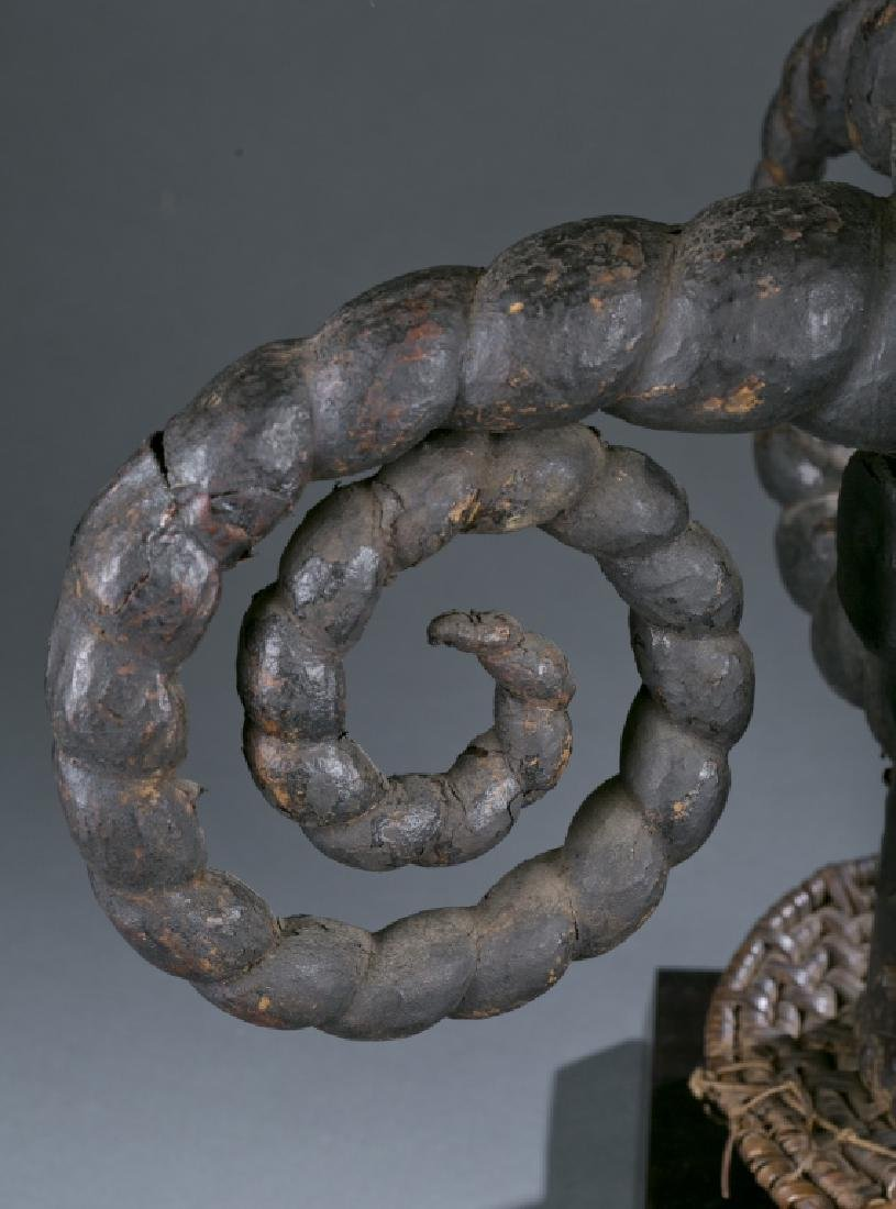 Skin covered headdress with five curled horns - 4
