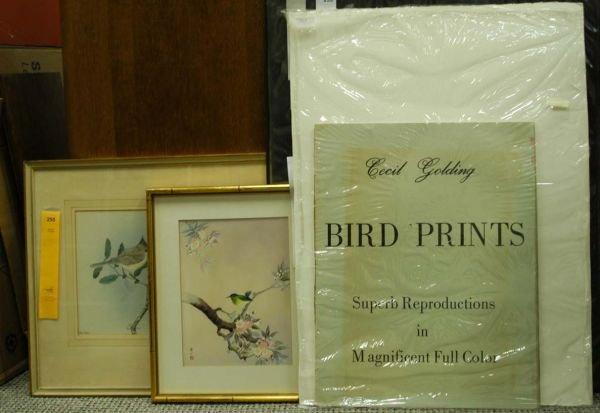 255: [Birds]. 13 Color Prints.