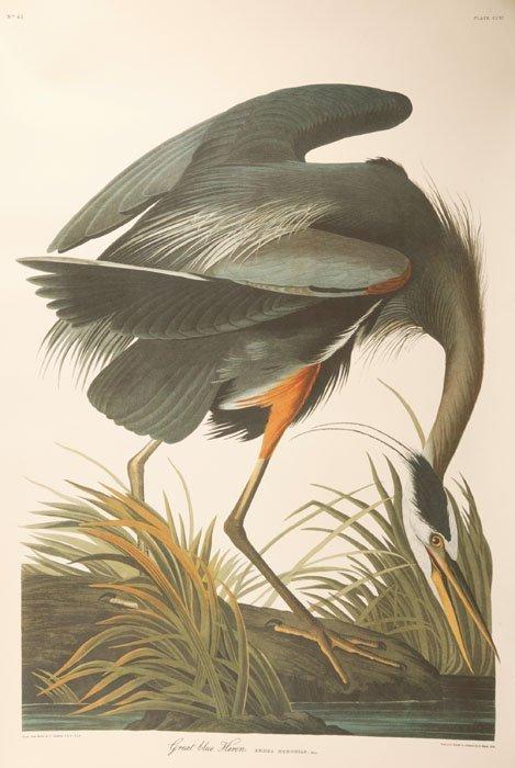 1: ''Great Blue Heron'' (Martino, 2005) #169-173 of 500