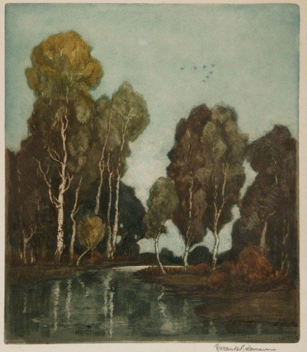 20: Alexander Liebmann, aquatint 74/150 signed