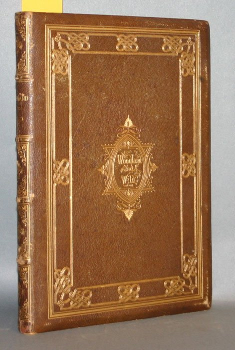 1010: WOODLAND AND WILD. NY: Appleton 1868, 12 plates.
