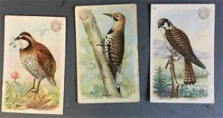 71 baking soda cards, mostly featuring birds.