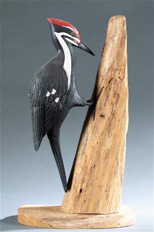 Charles Brock, woodpecker.