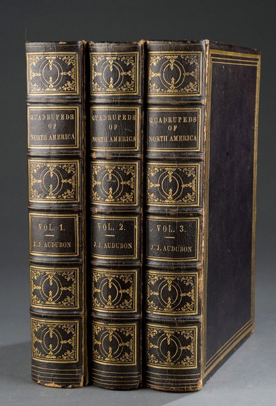1141: Audubon. THE QUADRUPEDS OF NORTH AMERICA. 3 Vols.