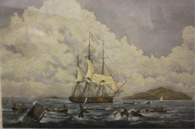 South Sea Whale Fishery Engraving 1825