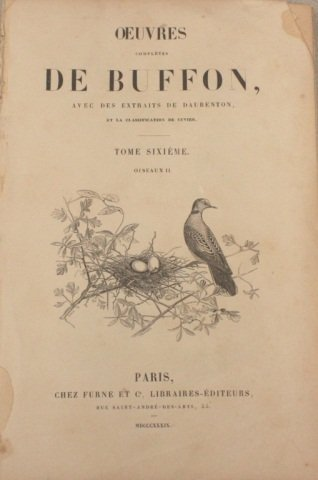 Group of French Ornithological Prints